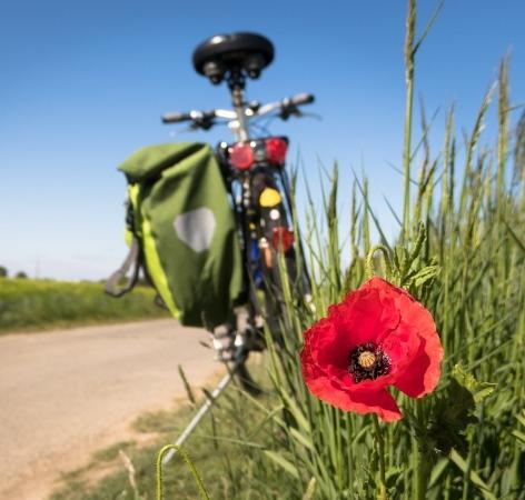 Offerte per gli amanti della bici